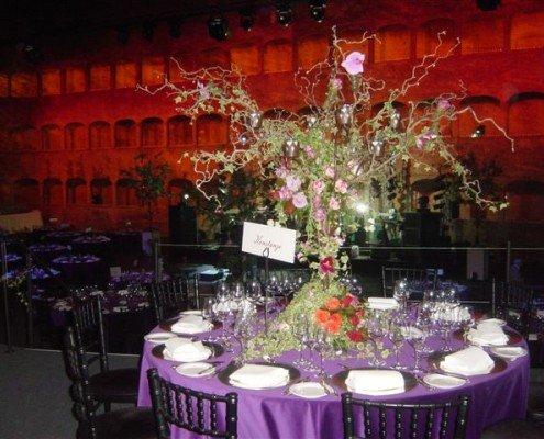 Zauberkünstler TOMBECK verzaubert bei der Escada-Hochzeit